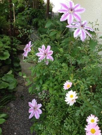 f:id:rieko-k:20130508130555j:image:left