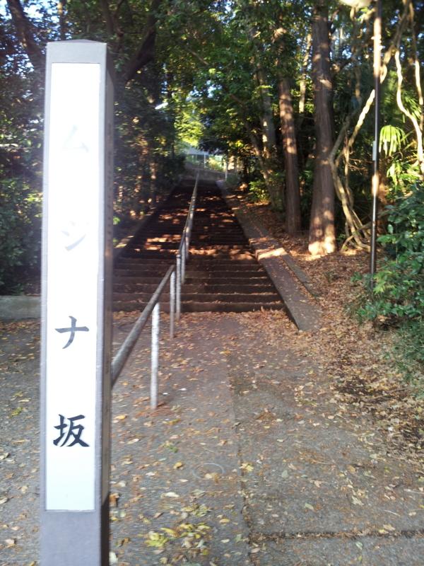 f:id:rihitomitsunaga:20121118155746j:image:w458