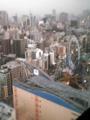 文京区シビックセンターより、後楽園を臨む。