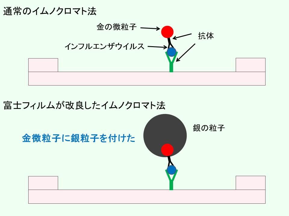 イムノクロマト法を比較したモデル