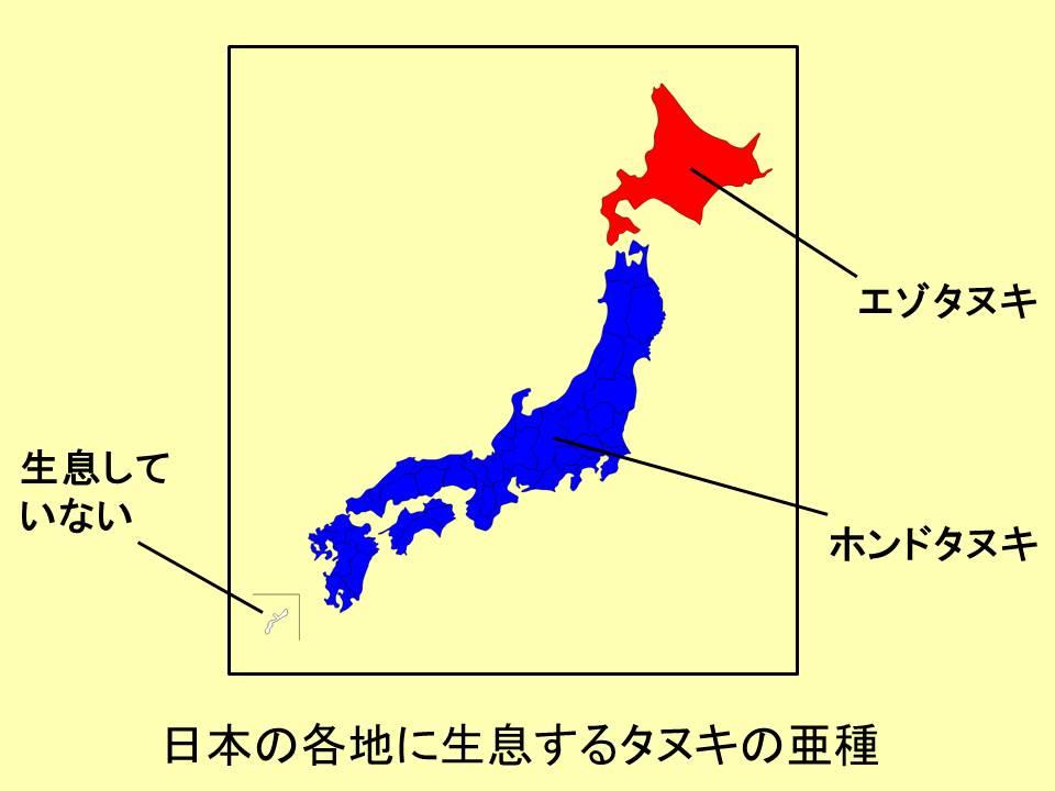 f:id:rike-koumuinn-shiken:20181115183329j:plain