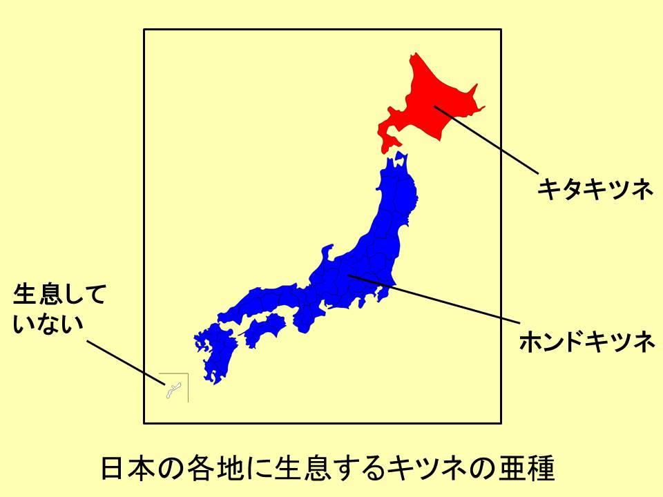 日本地図と文字