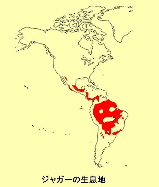 ジャガーの生息地に赤い印をつけた南北アメリカ大陸の地図