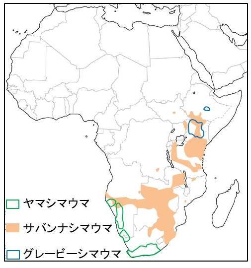 アフリカ大陸の地図と3種のシマウマが生息する場所を示す図