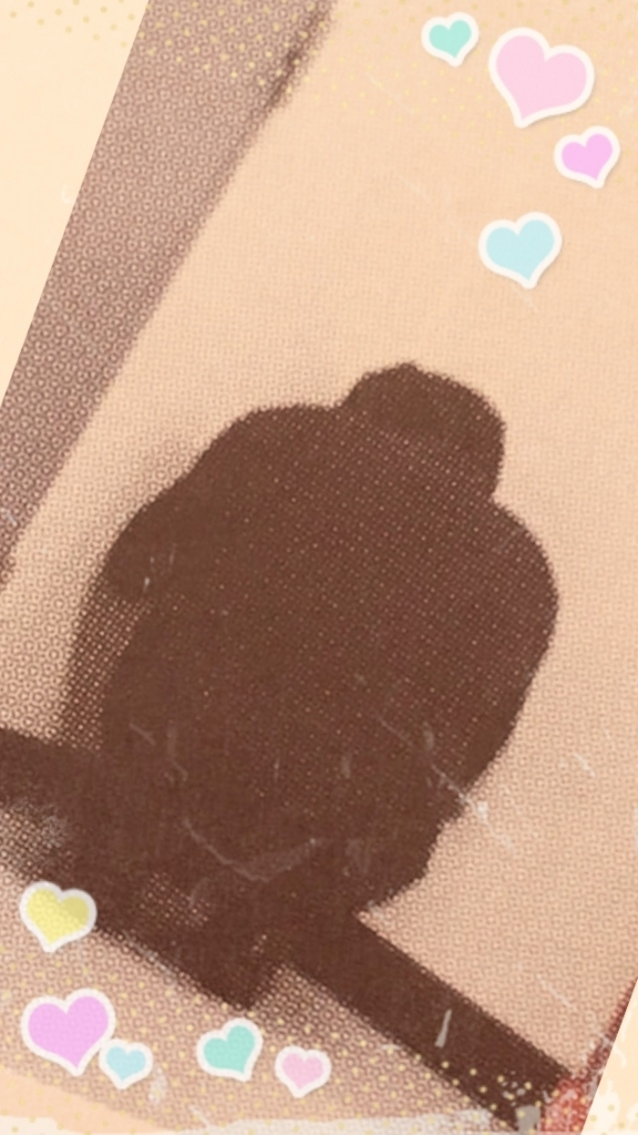 f:id:riki-kanade-miyuki:20170622183150j:plain