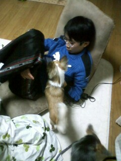 f:id:riku-mama:20100219203423j:image