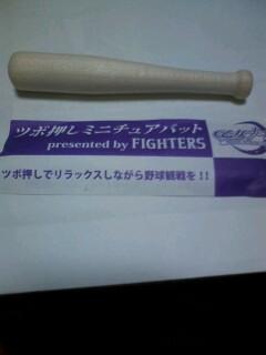 f:id:riku-mama:20100521214233j:image