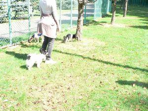 f:id:riku-mama:20100920103426j:image