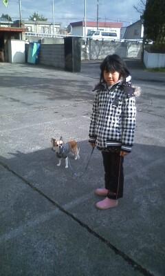 f:id:riku-mama:20101120095834j:image