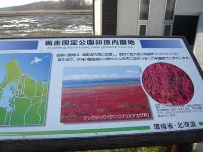 f:id:riku-mama:20110516062350j:image