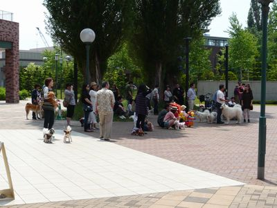 f:id:riku-mama:20110619123630j:image