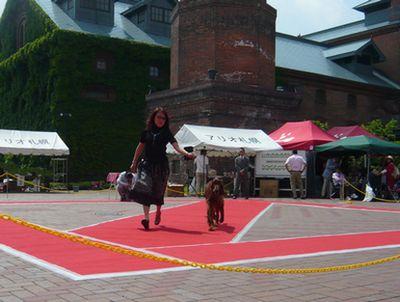 f:id:riku-mama:20110619132818j:image