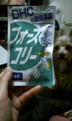f:id:riku-mama:20110625201542j:image