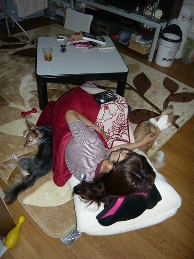 f:id:riku-mama:20110805213048j:image