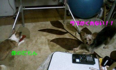 f:id:riku-mama:20120209184250j:image