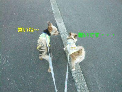 f:id:riku-mama:20120626170612j:image