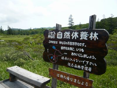 f:id:riku-mama:20120721103721j:image