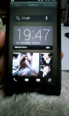 f:id:riku-mama:20121202194709j:image