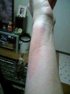 f:id:riku-mama:20121231154713j:image