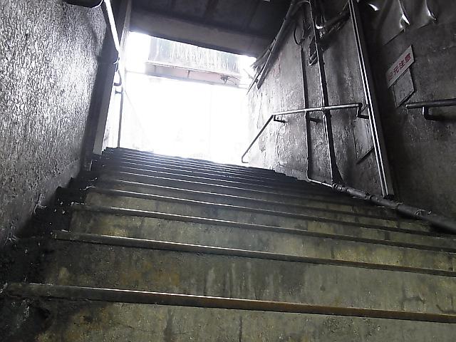 f:id:rikueri:20120225133259j:image:w420:left