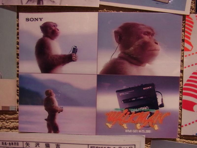 f:id:rikueri:20120607210859j:image:w420:left