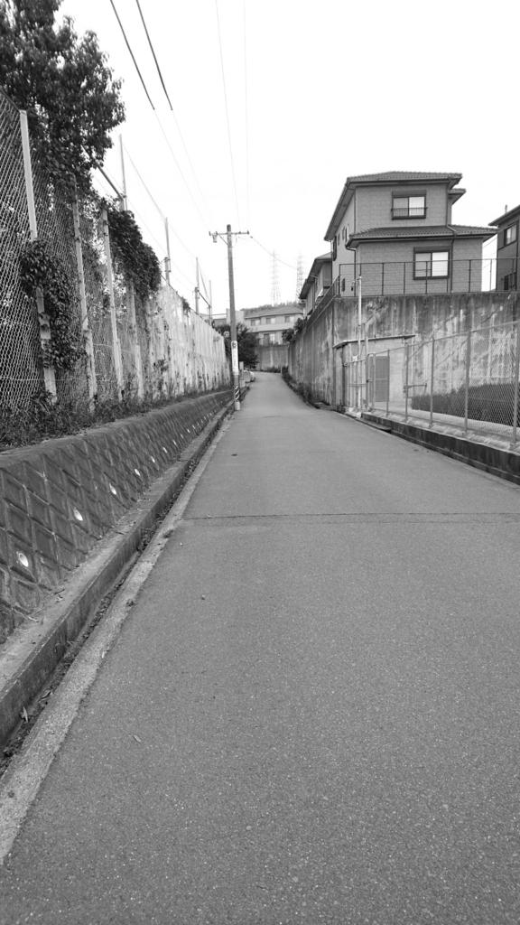 f:id:rikujyou_oyaji:20160626191257j:plain