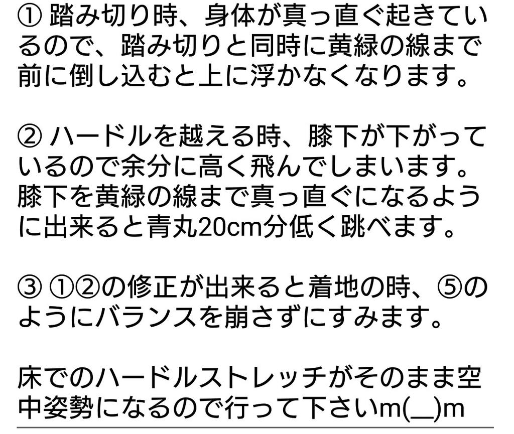 f:id:rikujyou_oyaji:20190211200718j:plain