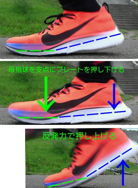 f:id:rikujyou_oyaji:20200126131347j:image