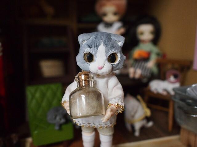 f:id:rikuomofu2:20160919133016j:image