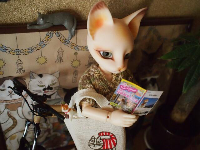 f:id:rikuomofu2:20170310085759j:image