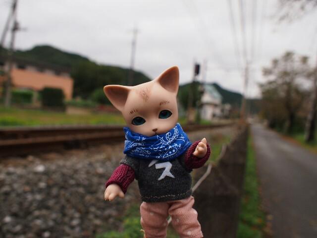 f:id:rikuomofu2:20171018223443j:image