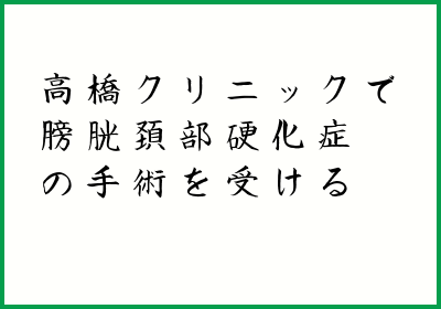 f:id:rimutsutaka:20170813092619p:plain