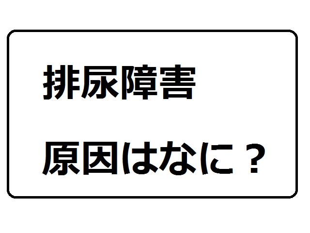 f:id:rimutsutaka:20171116084303p:plain