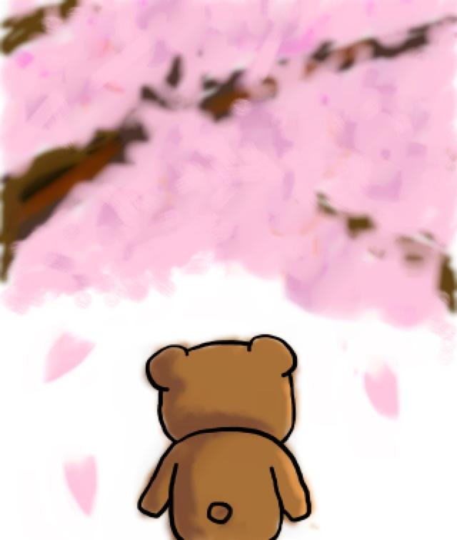くまぬりえ桜
