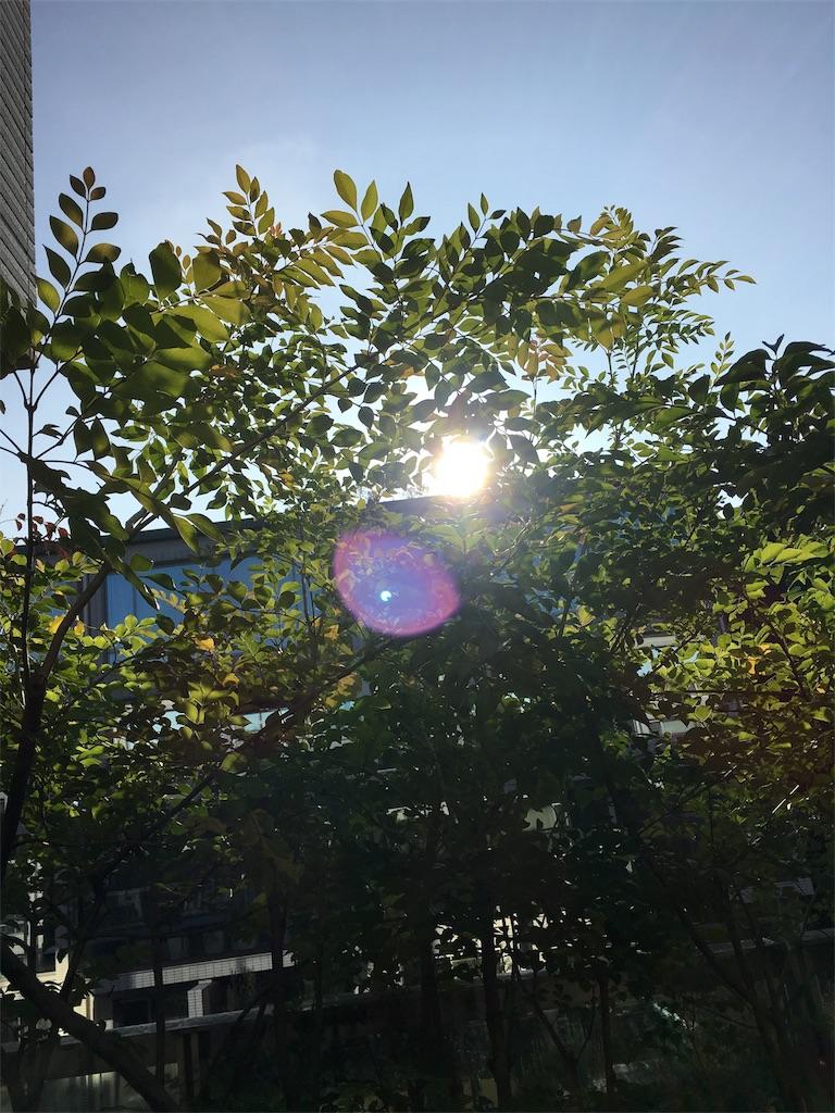 f:id:rina-hasemedia:20170511063821j:image
