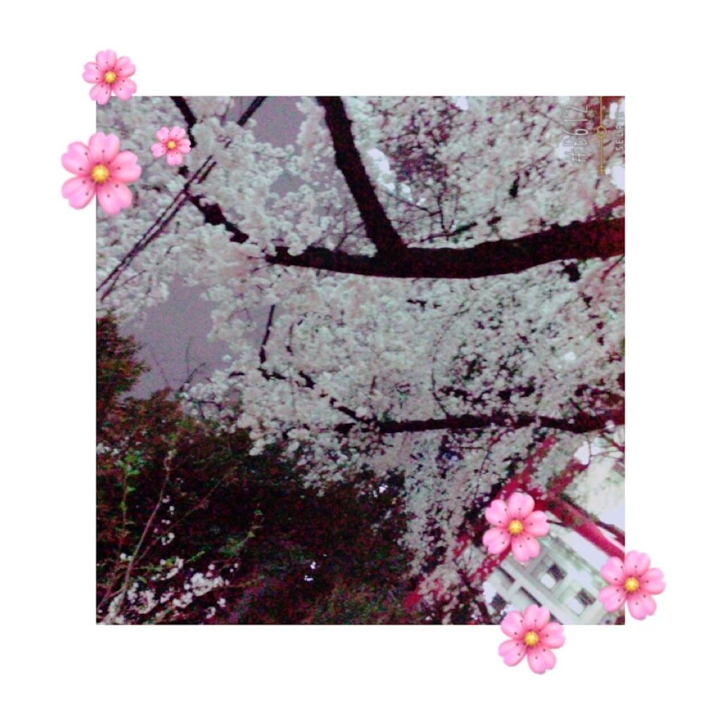 f:id:rinakkuma052:20170405194824j:image