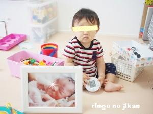 f:id:ringo_co:20160823000648j:plain