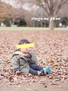 f:id:ringo_co:20161126231310j:plain