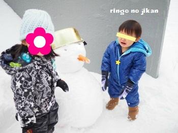 f:id:ringo_co:20170107015054j:plain