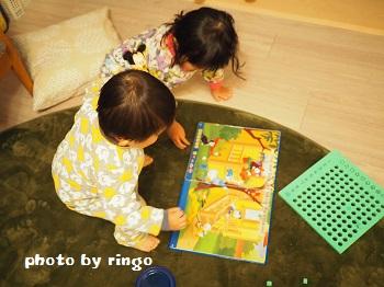 f:id:ringo_co:20170208054820j:plain