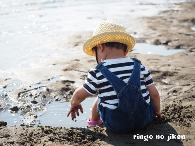 f:id:ringo_co:20170615052220j:plain