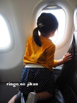 f:id:ringo_co:20170701053921j:plain