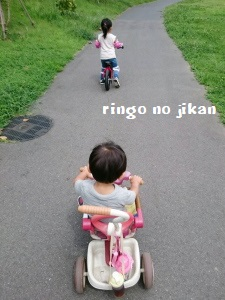 f:id:ringo_co:20170831065128j:plain