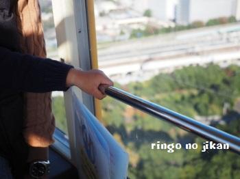 f:id:ringo_co:20171115052950j:plain