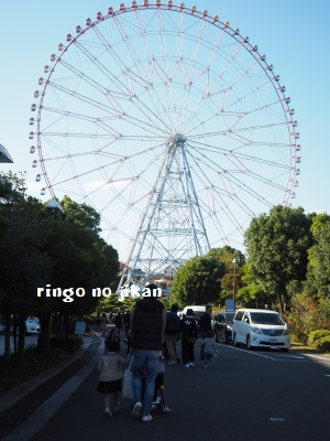 f:id:ringo_co:20171115053424j:plain
