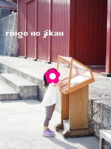 f:id:ringo_co:20180408020910j:plain
