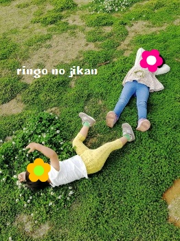 f:id:ringo_co:20180430053057j:plain