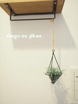 f:id:ringo_co:20180627133650j:plain