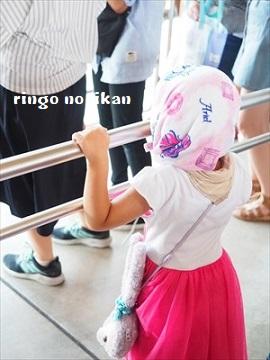 f:id:ringo_co:20180813234400j:plain
