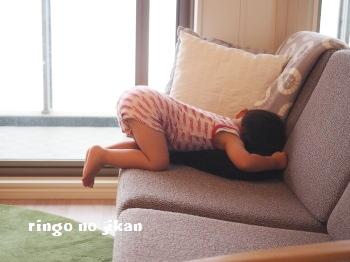 f:id:ringo_co:20180817020240j:plain